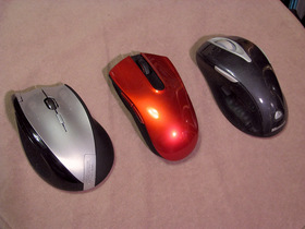 マウス2012a.jpg