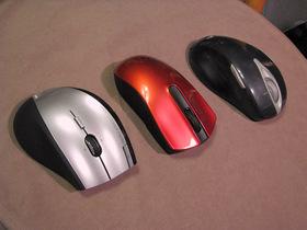 マウス2012b.jpg